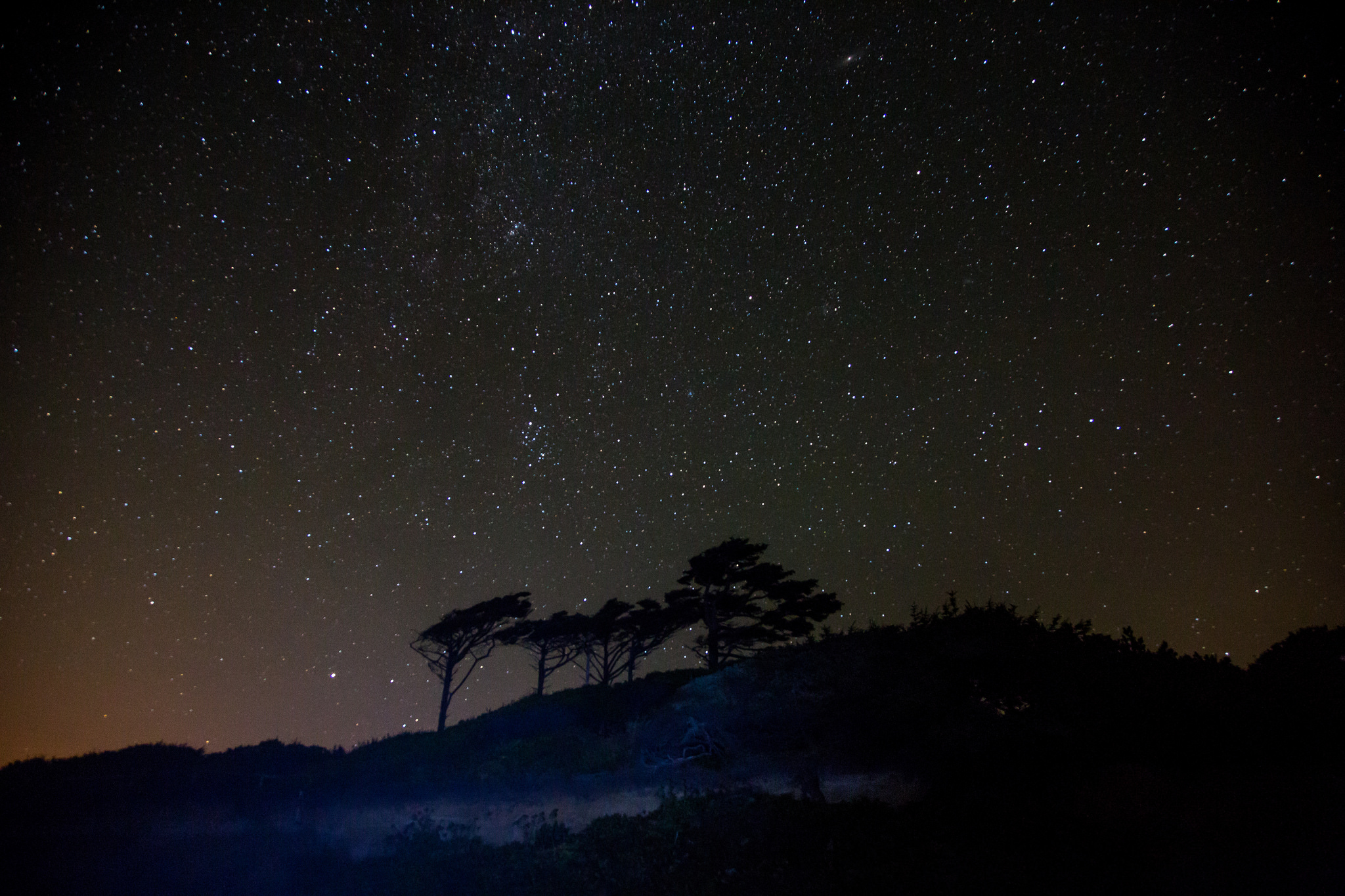 Stars On The Beach by Mick O.