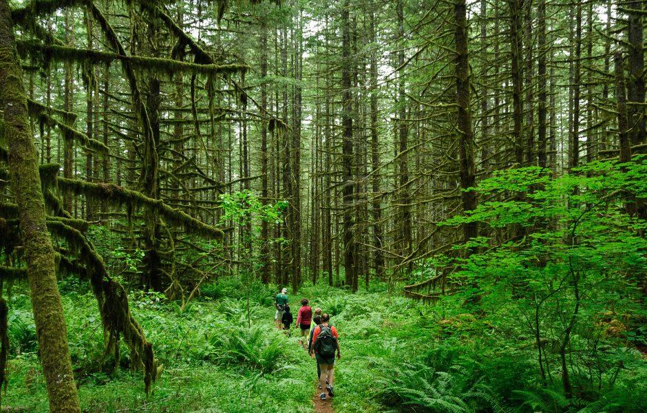 Hike by Loren Kerns.