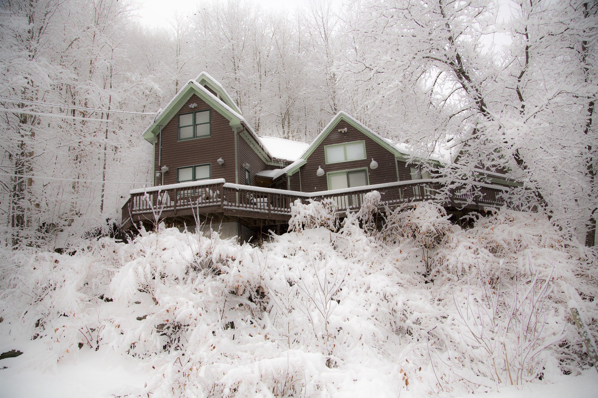 Winter Wonderland by Richard Ricciardi.